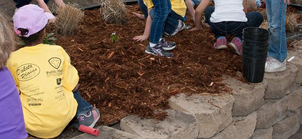 Trending: School Gardens Teach Kids Sustainable Practices