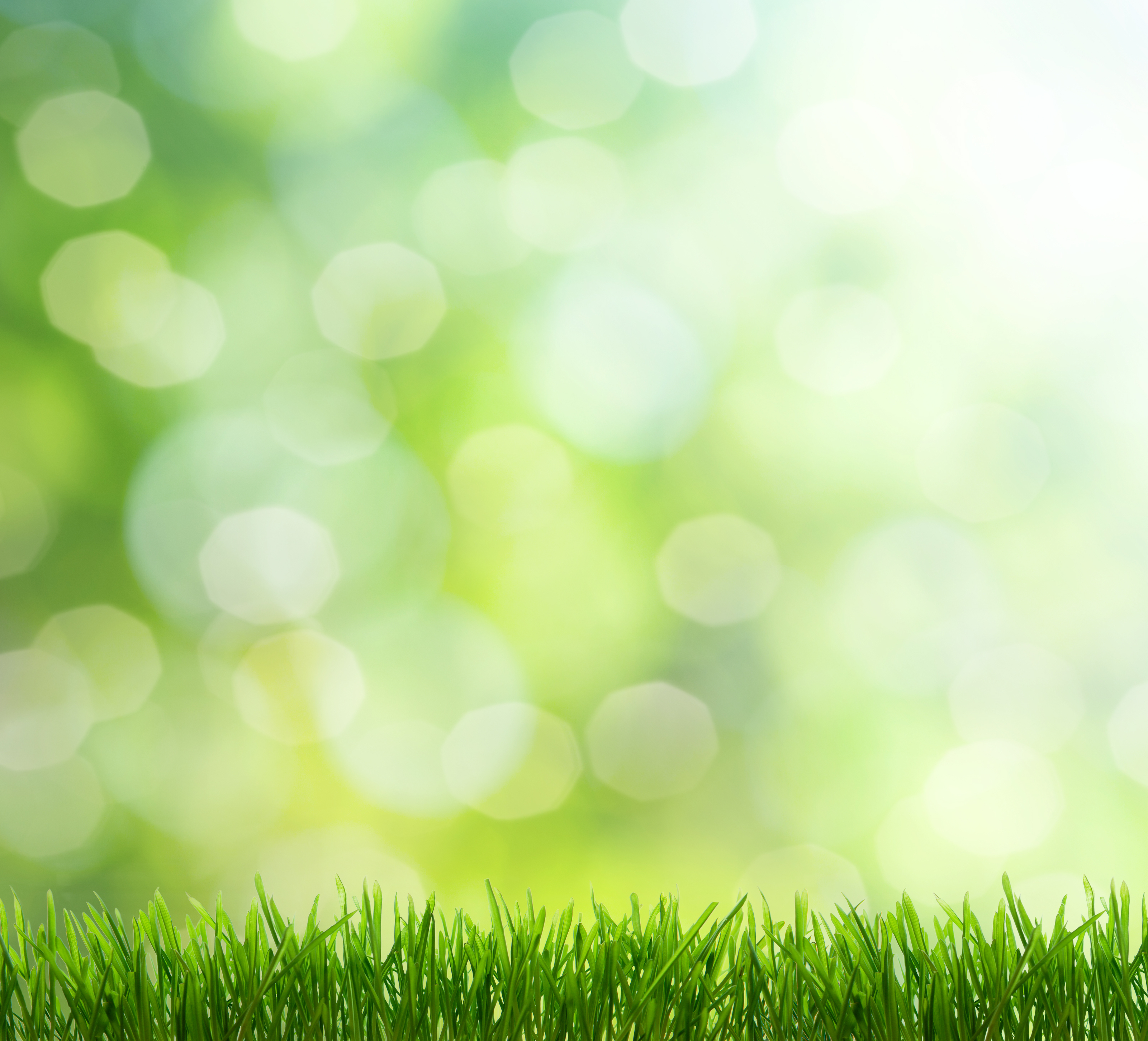 More great sources for green living environmental watch for Green living