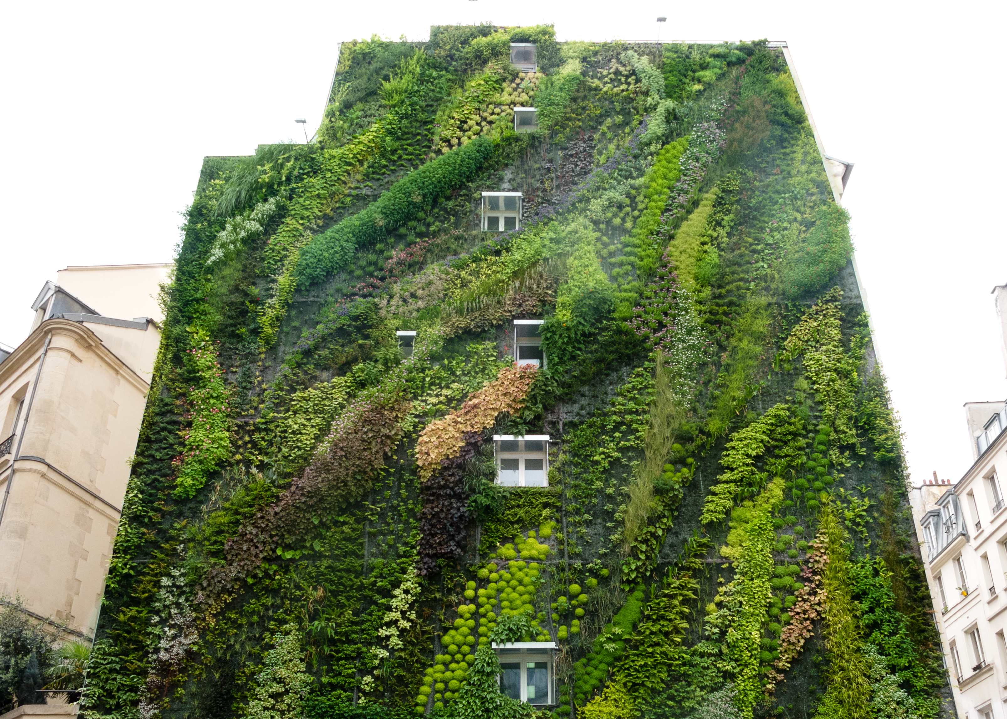 This Hanging Garden Will Blow Your Mind Environmental Watch