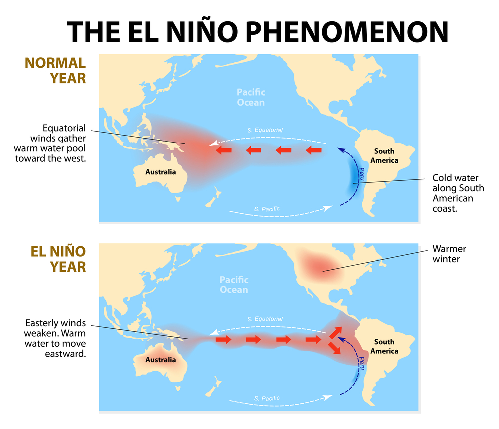 The El-Niño Phenomenon