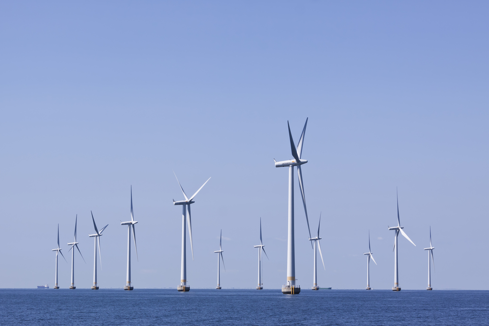 How Offshore Wind Farms Affect Marine Life