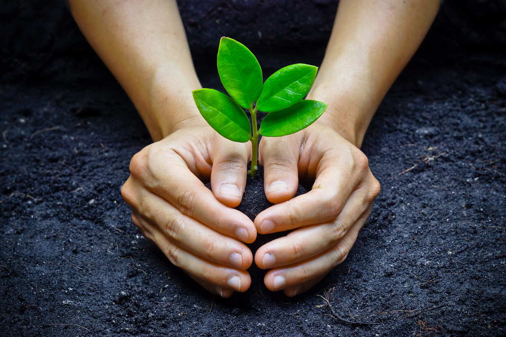 Investing Green in a Greener World: ESG and Corporate Investments