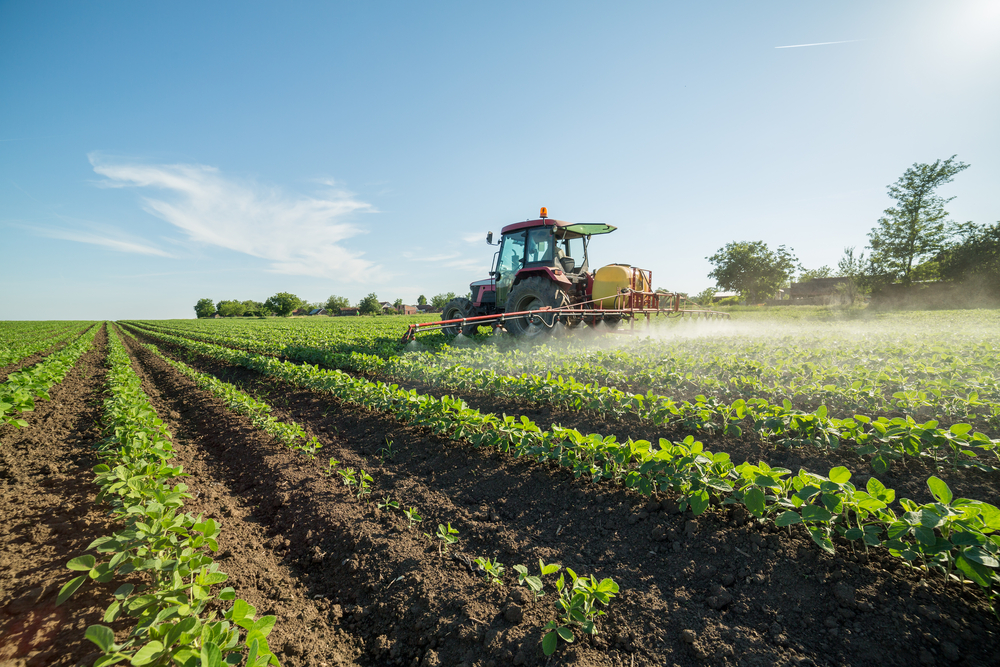 Farmers Can Reduce Monoculture Hazards Through Genetic Diversity