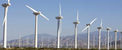 Wind farms may be responsible for more bird deaths than previously thought.