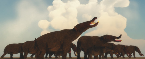 Climate change, not human activity, was the likely culprit for megafauna extinctions.