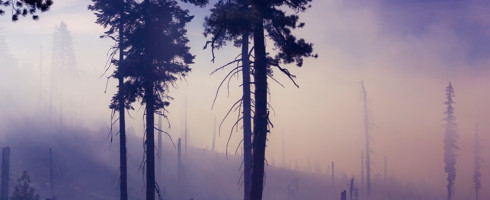 Humans have dramatically increased the extent and duration of wildfire season.