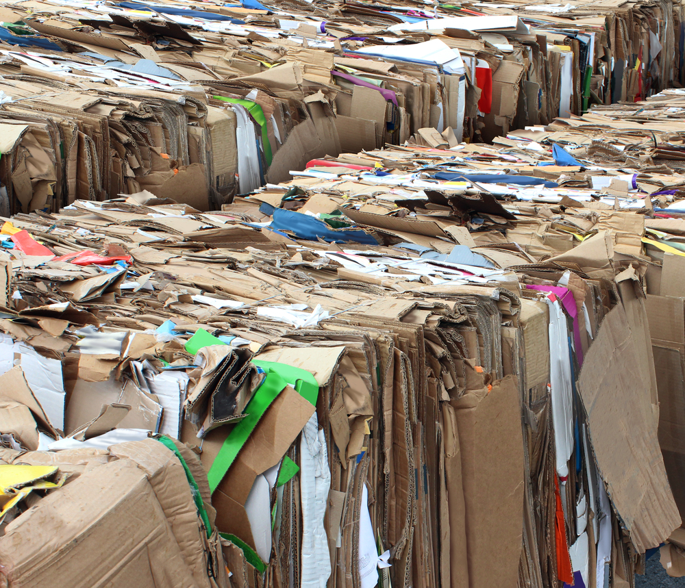 Online Shopping Creates A Sea of Cardboard For the Sake of Convenience