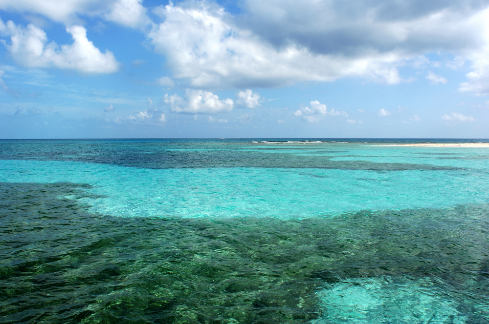 Project to Save the Belize Coast is a Win-Win