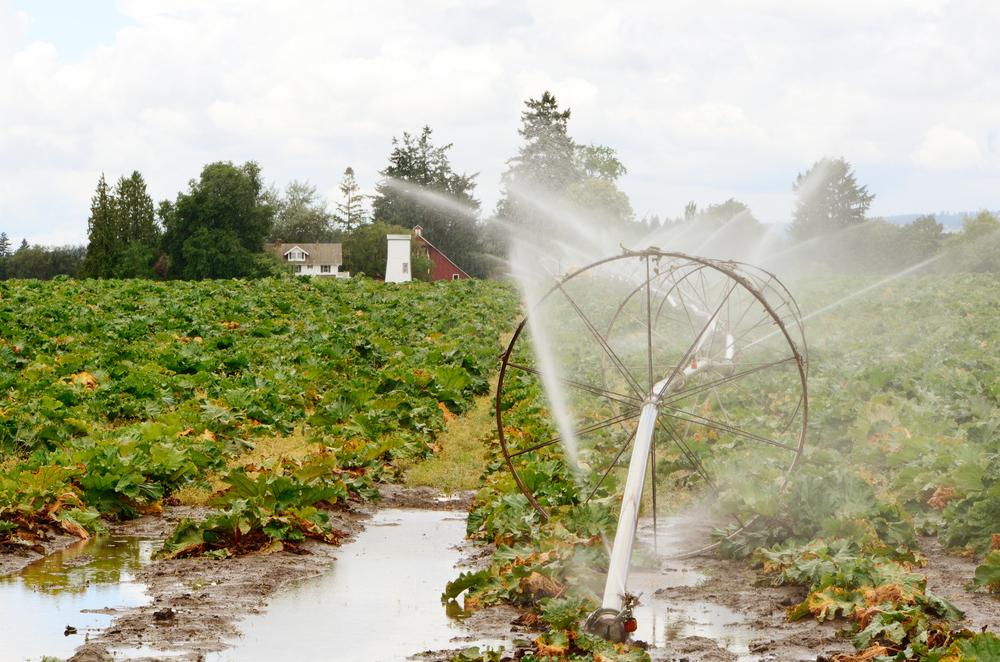 Non-Extreme Precipitation Can Produce Extreme Consequences